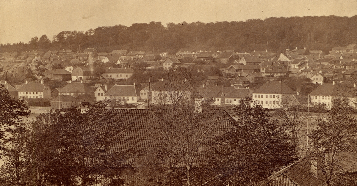 The main street in Larvik, approx. 1866