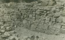 Fragment muru północnego nawy - dawny kościół św. Michała
