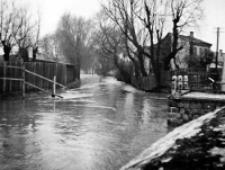 Widok ulicy Parkowej w czasie powodzi w Lublinie w 1947 roku. Fotografia