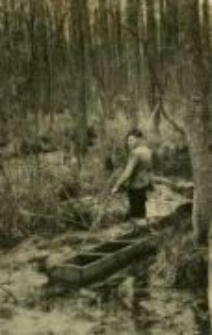 Tadeusz Stankiewicz on the marsh near Głodno forester's lodge in which there was a hiding place, c. 1940 - 1941