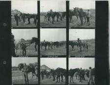 Wglądówka, 1 – 9 Rajd członków Klubu Jeździeckiego szlakiem gen Kleberga