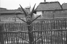 Skan Negatywu, 1 – 30 Muzeum Wsi Lubelskiej
