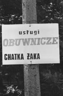 Skan negatywu, sygnatura 1952