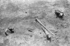 Wykopaliska archeologiczne w Kotlinie Hrubieszowskiej