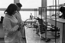 Instytut Fizyki i Chemii UMCS